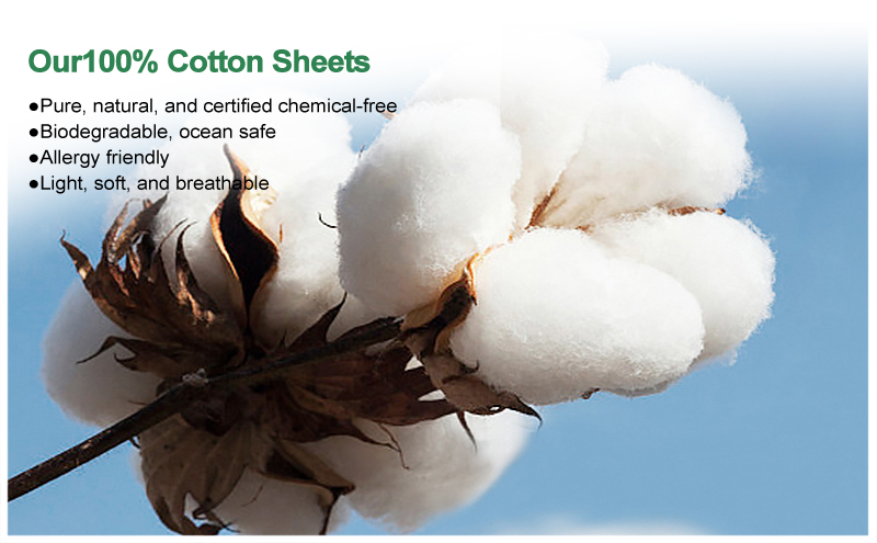 Is Egyptian Cotton Good